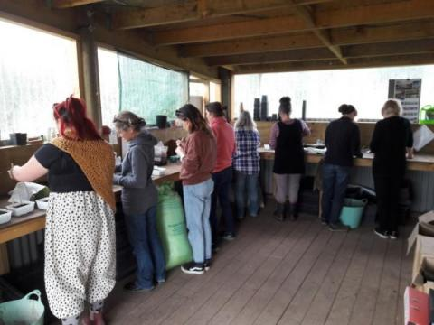 Kahikatea Farm Propagation Workshop