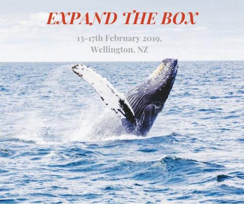 Expand The Box Wellington, picture of whale breaching from the ocean